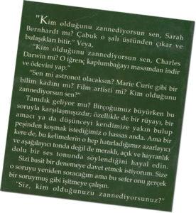 Sihirli Değnek back cover